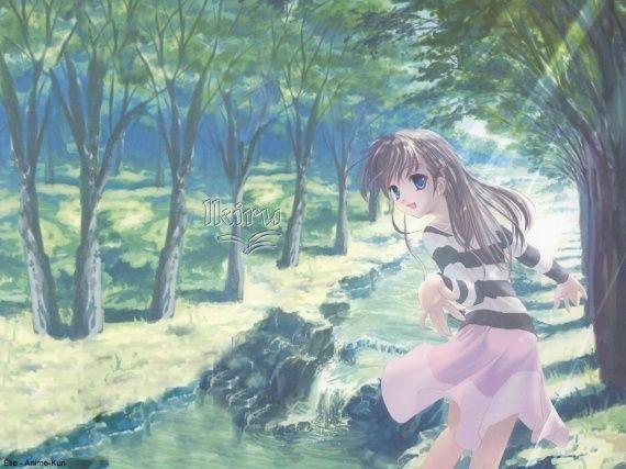 http://umi-no-hoshi.u.m.pic.centerblog.net/o/09fc2b21.jpg